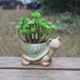 Ceramic creative fortune turtle longevity turtle flowerpot