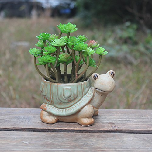 Ceramic creative fortune turtle longevity turtle flowerpot by spie