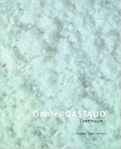 Téléchargement Daniel Gastaud, continuum pdf epub