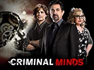Criminal Minds, Season 13