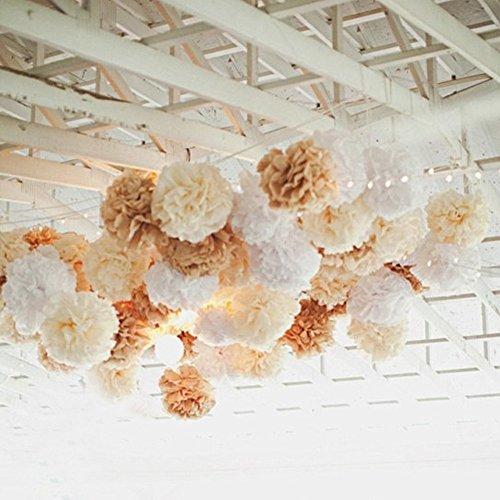 10PCS Mixed Cream Tan Brown White Party Tissue Paper Pom Poms Rustic Wedding Vintage Baby Shower Birthday Nursery Hanging Decoration ()