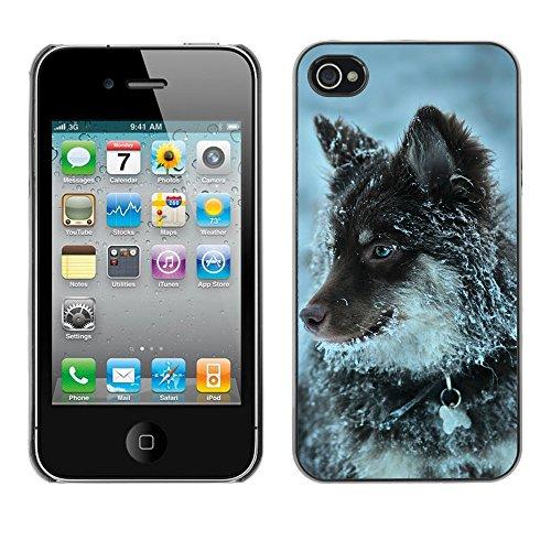 Premio Sottile Slim Cassa Custodia Case Cover Shell // F00014363 Loup // Apple iPhone 4 4S 4G