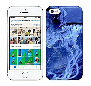 Best Power(Tm) HD Colorful Painted Watercolor Colorblue Blue Hard Phone Case For Iphone 5/5S