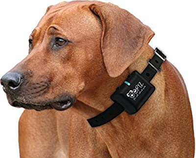 Ortz® Rechargeable Bark Collar [FREE CHARGER] Waterproof Dog Control Shock Collar for Small, Medium & Large Dogs - Best Electric Vibration Anti NO Bark Training [Black]