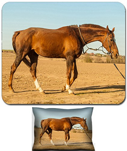 Liili Mouse Wrist Rest and Small Mousepad Set, 2pc Wrist Support ID: 27982026 Horse in countryside