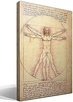 cuadro canvas El Hombre Vitruvio de Leonardo Da Vinci - 40cm x 55cm