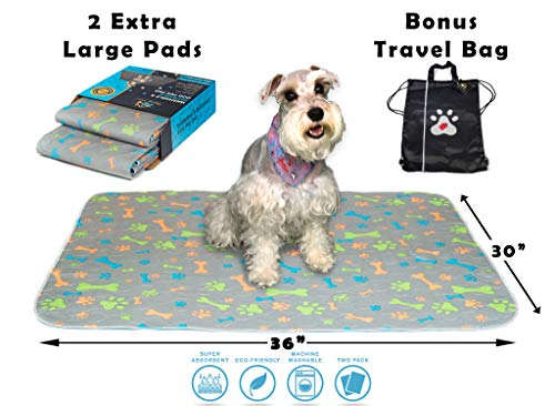 Washable Pee Pads For Dogs, Dog Training Pads, Whelping Pad, Crate Pad, Dog Mat, Potty Pad for Dogs, Waterproof Puppy Pads, Reusable Dog Pee Pads, Incontinence Dog Bed Pad (Latest Design & Travel Bag)