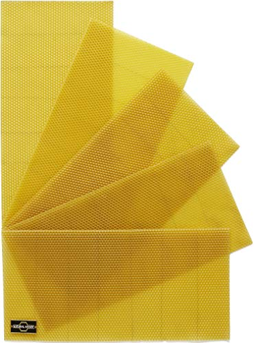 Natural Apiary Beekeeping Foundation-LANGSTROTH 100% Pure Beeswax Wired Sheets, Deep-Ten (10), Beehives