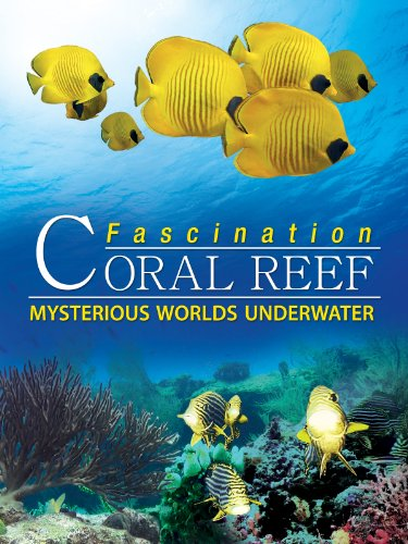 Fascination Coral Reef: Mysterious Worlds Underwater