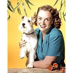 June Lockhart with Dog 8x10 Photo #S1885