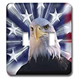 3dRose LSP_278587_2 USA, California. Composite of Bald Eagle and American Flag Toggle Switch, Multicolor