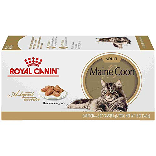 Royal Canin Maine Coon Breed Thin Slices in Gravy Adult Wet Cat Food Multipack, 3 oz, Count of ()