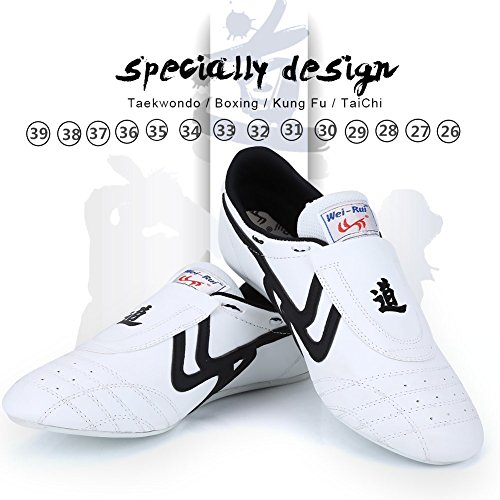 Taekwondo Shoes Martial Arts Sneaker Boxing Karate Kung Fu Tai Chi Shoes Black Stripes Sneakers Lightweight Shoes for Men Women (39)
