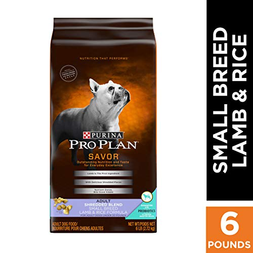 Best Food For French Bulldogs With Sensitive Stomach