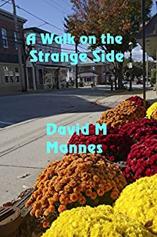 A Walk on the Strange Side by [Mannes, David M.]