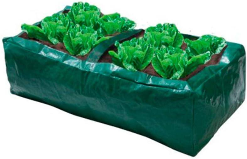 Bolsa / Maceta de plástico para cultivo de lechugas / ensaladas ...