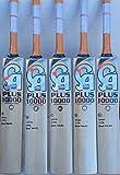 CA PLUS 10000 English Willow Cricket Bat