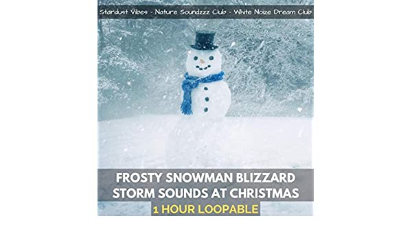 Frosty Snowman Blizzard Storm Sounds at Christmas (One Hour