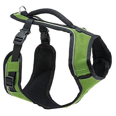 PetSafe Easysport Harness from Toys & Behavior