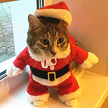 Pet Cat Clothes Christmas Cat Clothes Costume Clothes for Cats New Year  Puppy Outfit for Chihuahua - Amazon.com : Pet Cat Clothes Christmas Cat Clothes Costume Clothes