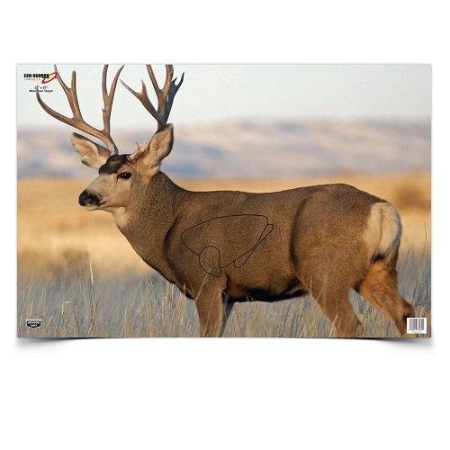 Birchwood Casey 37482 Eze-Scorer Mule Deer Paper Target (2 Count), 23 x 35-Inch