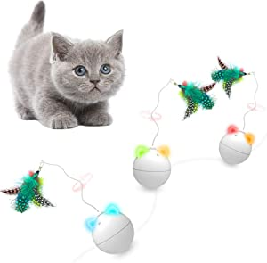 Sweepstakes: Yvelife Robotic Cat Feather Toy Interactive