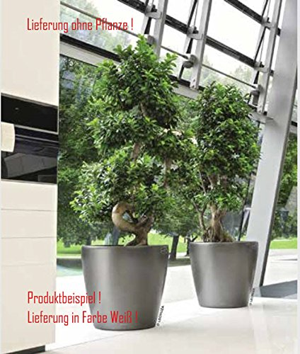 Blumenübertopf Classico Premium, sonnen-und regenbeständig für Innen und Außen, Farbe Weiß, Ø ca.60cm Höhe ca.56cm