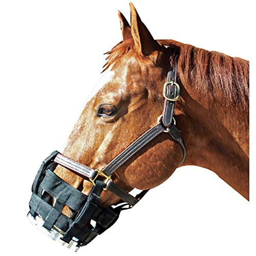 BEST FRIEND EQUINE SUpplies Muzzle Free-to-Eat Lg Hrs Blk, Oversize/Large Horse