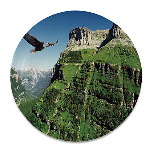 YOLIYANA Eagle Round Ceramic Decorative Plate,Wild Majestic Bird Flying Great Landscapes Green Mountains Forest Nature Image for Table Or Wall,8 inch ()