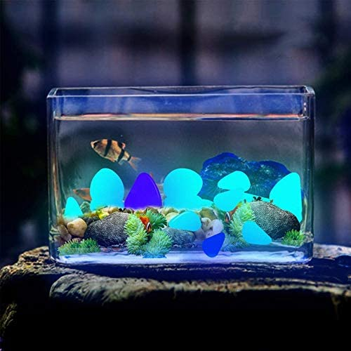 Silverdrew Jard/ín Guijarros Piedras incandescentes Rocas para pasarelas Sendero del jard/ín Patio C/ésped Jard/ín Jard/ín Decoraci/ón Piedras Luminosas Azul claro30pcs