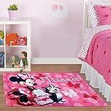 Disney Minnie Mouse Rug w/ Figaro Cat HD Digital