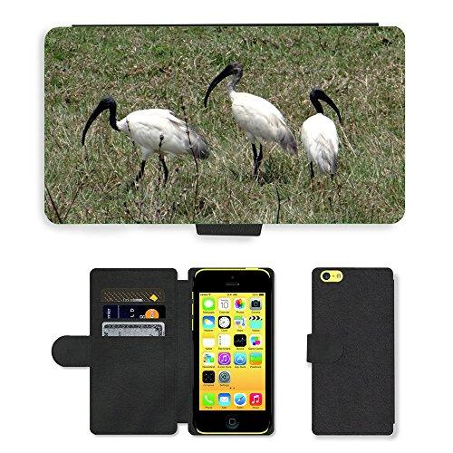 Just Phone Cases PU Leather Flip Custodia Protettiva Case Cover per // M00128605 Ibis à tête noire blanche orientale // Apple iPhone 5C