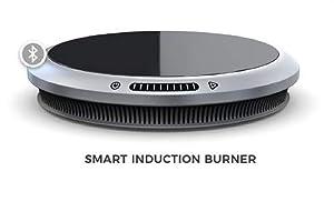 Hestan Smart Cooking 41000 Induction Burner, Black/Gray