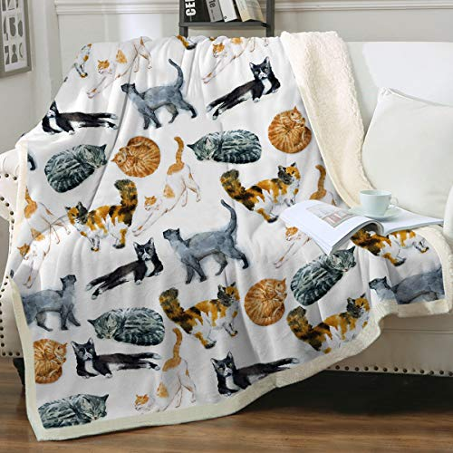 """Sleepwish Cat Fleece Throw Blanket Hipster Cats Pattern Sherpa Plush Throw Blanket for Couch Bed Kids Girls Vintage Animal Blanket (50"""" x 60"""")"""