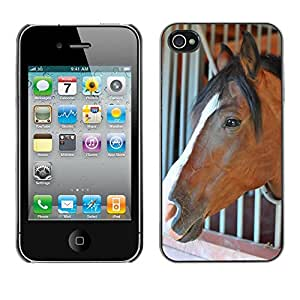 Just Phone Cases Slim Protector Hard Shell Cover Case // M00127321 Horse Stable Head Wild Horse Animal // Apple iPhone 4 4S 4G