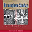 Birmingham Sunday Audiobook by Larry Dane Brimmer Narrated by Robin Miles