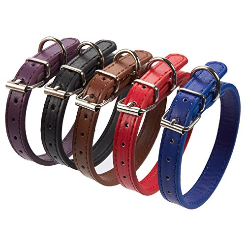 Leather Dog Collar - 5-Pack Collars for Small and Medium Dogs, Padded Classic Collars with Adjustable - Dog Adjustable Collar Leather