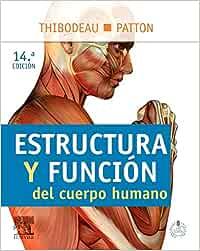 Estructura y función del cuerpo humano: Amazon.es