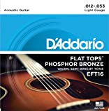 D'Addario EFT16 Flat Tops Phosphor Bronze Acoustic Guitar Strings, Light, 12-53