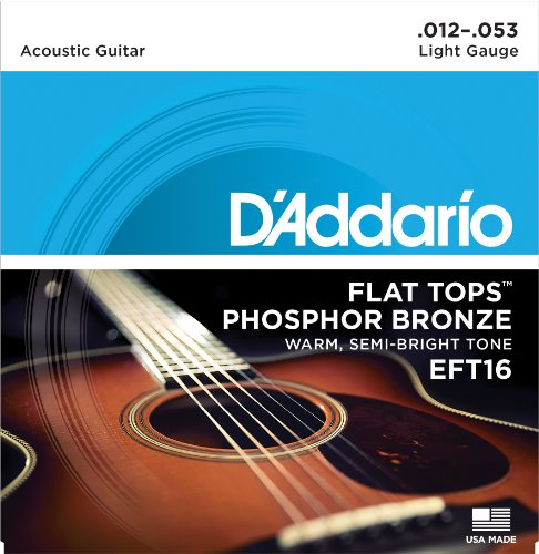 Dave Matthews Electric Guitar (D'Addario EFT16 Flat Tops Phosphor Bronze Acoustic Guitar Strings, Light, 12-53)