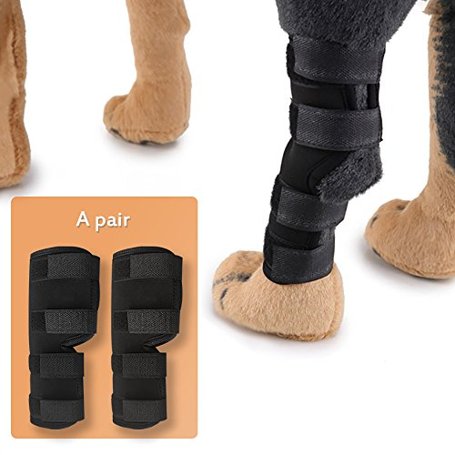 Sumura Canine Dog Hock Brace Rear Leg Joint Wrap   Hock Joint Wrap Protects Wounds As They Heal  Compression Wrap  For Heals And Prevents Injuries And Sprains Helps With Loss Of Stability  Medium