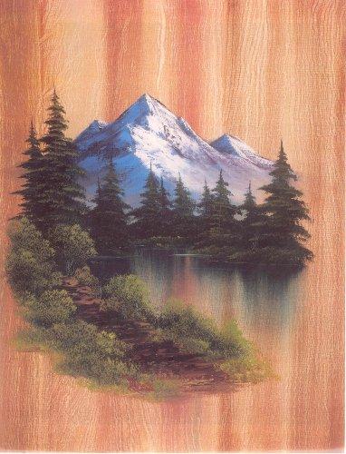 Bob Ross DVD Joy of Painting Series 28 (Joy Of Painting Series 2)