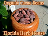 Organic Cacao Beans - 16 oz (1 lb) - Deluxe Unrefined Whole Cacao