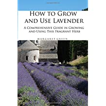 How to Grow and Use Lavender: A Comprehensive Guide in Growing and Using This Fragrant Herb