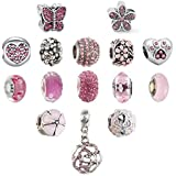 N'joy 16-Piece Mixed Crystal Rhinestone Charm Beads,Clap,Stoper,Dangle Pendant Fit European ...