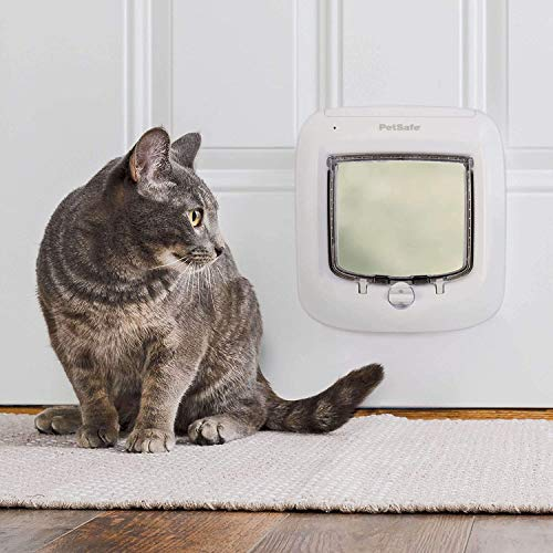 PetSafe Interior and Exterior