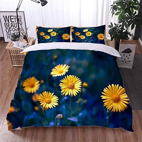 - VROSELV-HOME European Style Print Bed Set,Camomile chamomel Daisy Chain Wheel an Aromatic European Plant of,Soft,Breathable,Hypoallergenic,100% Cotton Bedspread/Quilt Set,3 Pieces