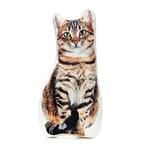 Cushion Co -Tabby Cat Pillow 16