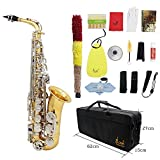 Andoer LADE Alto Saxophone Sax Glossy Brass Engraved Eb E-Flat Natural White Shell Button Wind Instrument with Case Mute Gloves Cleaning Cloth Grease Belt Brush