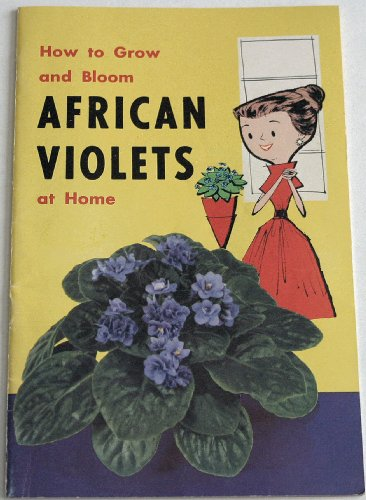 African Violets (How to Grow and Bloom at Home) - African Violet Blooms